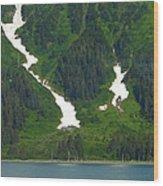 Glacier 16 Wood Print