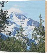 Glacier 5 Wood Print