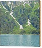 Glacier 9 Wood Print
