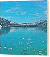 Glacier Bay National Park-alaska Wood Print