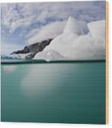 Glacier Bay National Park, Alaska Wood Print