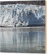 Glacier Bay National Park Wood Print