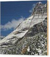 Glacier Mountains Wood Print