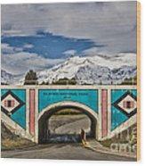 Glacier National Park East Gate Wood Print