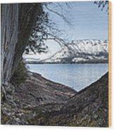 Glacier Park View Wood Print