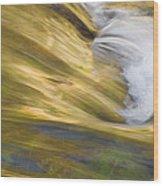 Glacier Stream Glacier National Park Wood Print