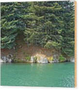 Glacier Water 1 Wood Print