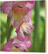 Glad Beauty Wood Print