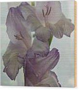 Glad Gladiola Wood Print