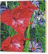 Gladiola And Echinacea Wood Print