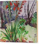 Gladioli-4 Wood Print