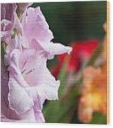 Gladiolus Bouquet Wood Print