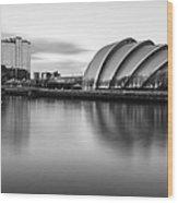 Glasgow Armadillo Wood Print by John Farnan