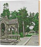 Glasnevin Cemetery 2 Wood Print