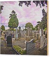 Glasnevin Cemetery Wood Print