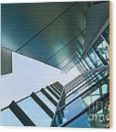 Glass And Metal - Walt Disney Concert Hall In Downtown Los Angeles Wood Print