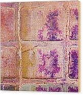 Glass Crossings 3 Wood Print by Carol Leigh