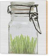 Glass Jar Wood Print