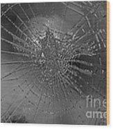 Glass Spider Wood Print