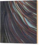 Glass Veins Wood Print by Kimberly Lyon