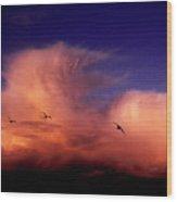 Glaucous-winged Gulls Larus Glaucescens Wood Print