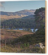 Glen Affric Panorama II Wood Print
