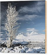 Glencoe Winter Landscape Wood Print by Grant Glendinning