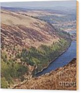 A Vision Of Glendalough, Ireland  # 3 Wood Print
