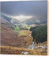 Glenmacnass 1 Wood Print