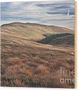 Glenmacnass 4 Wood Print