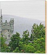 Glenveagh Wood Print