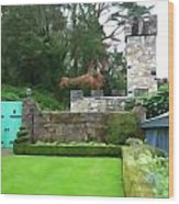 Glenveagh Garden Gate Wood Print