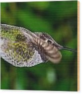 Gliding Hummingbird Wood Print