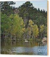 Glimpse Of Fall Wood Print
