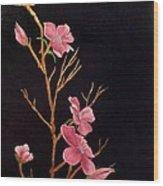 Glistening Blossoms Wood Print