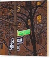 Glistening Branches On The Plaza Wood Print