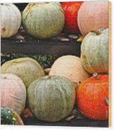 Glistening Gourds Wood Print