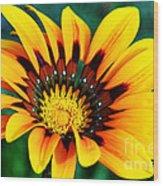 Glorious Day Yellow Flower By Diana Sainz Wood Print