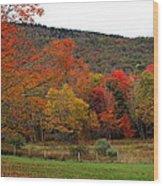 Glorious Fall Leaves Wood Print