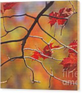 Glory Of Fall Wood Print