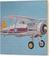 Gloster Gladiator Wood Print