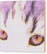 Glowing Cat Eyes Wood Print