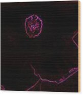 Glowing Hibiscus Wood Print