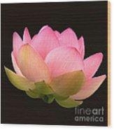 Glowing Lotus Square Frame Wood Print
