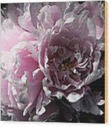 Glowing Pink Peony Wood Print