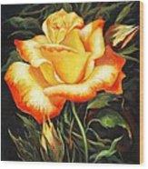 Glowing Rose 2 Wood Print