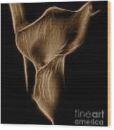 Glowing Sepia Lily Wood Print