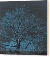 Glowing Tree Wood Print