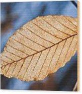 Glowing Venation Wood Print
