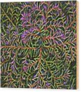 Glowing Vines Wood Print